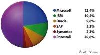 Udział producentów w rynku oprogramowania dla biznesu