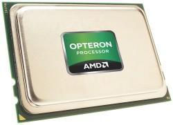 Układ AMD kosztuje znacząco mniej niż najbliższe mu układy Intela i oferuje dwa razy więcej rdzeni niż najpotężniejsze z nich. Na razie jednak – ponieważ Interlagos jest oparty na nowej architekturze rdzenia – nie jest obsługiwany przez wiele popularnych systemów operacyjnych.