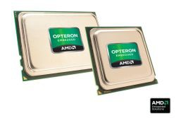 Procesory Opteron mają obecnie największą liczbę zintegrowanych rdzeni wśród dostępnych na rynku układów x86. Umożliwia to m.in. względnie łatwe uruchamianie dużej liczby maszyn wirtualnych.
