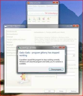 Gadu-Gadu 7.5 w Windows Viście RC1 (build 5600) - w innych systemach z rodziny Windows program działa poprawnie