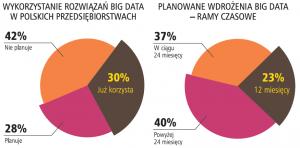 Wielkie dane w polskich organizacjach