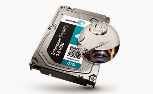 Seagate (Barracuda, model STBD6000100).