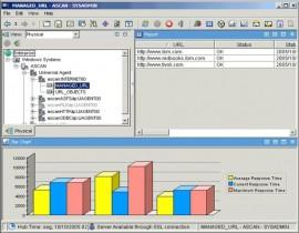 IBM Tivoli Monitoring - status monitorowanych serwisów WWW
