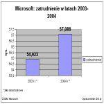 Microsoft: zatrudnienie w 2003-2004 (lata obrachunkowe)